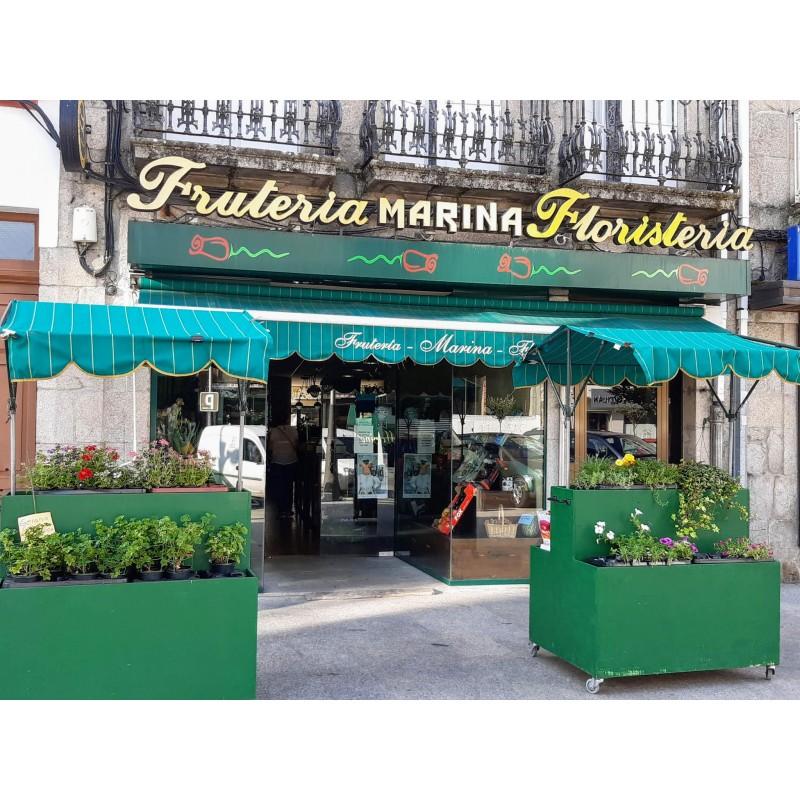 Floristería Frutería Marina